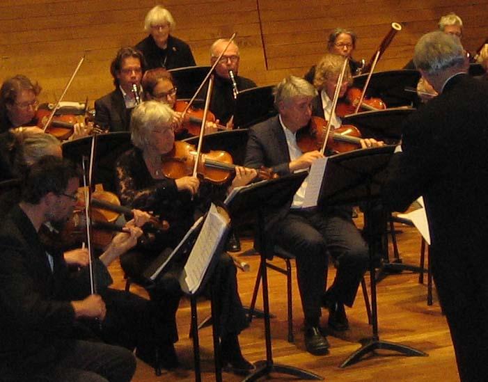 gedeelte orkest